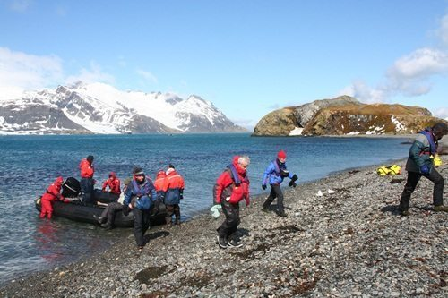 Antartica & South Georgia | Pat Falvey Adventure Travel