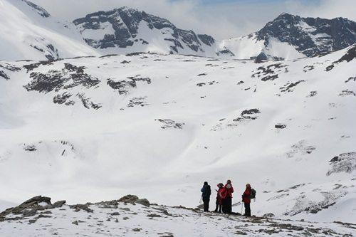 Antartica & South Georgia   Pat Falvey Adventure Travel