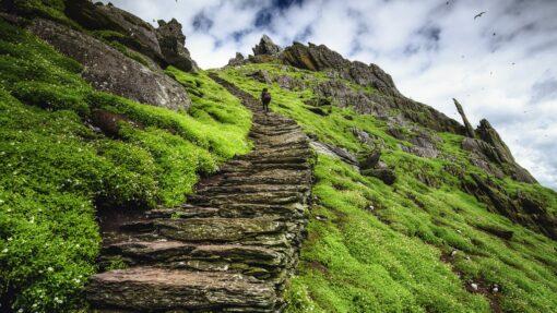 Pat Falvey Courses | Company Challenge
