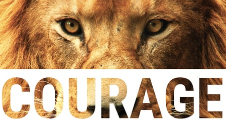 COURAGE | SIXTH ATTRIBUTES OF SUCCESS